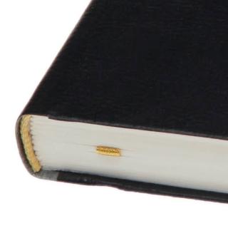ежедневник недатированный дакар премиум эластик 82059388