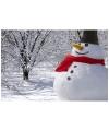 Набор Снеговик